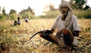थम नहीं रहा किसानों की खुदकुशी का सिलसिला