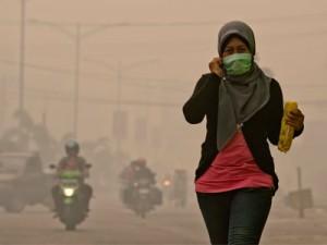 पर्यावरण असंतुलन का जिम्मेदार कौन ?
