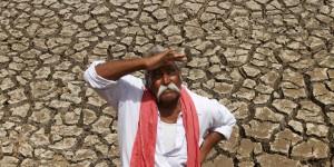 किसानों की हालत पर घडिय़ाली आंसू